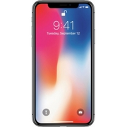 Apple - iPhone X 256GB - Space Gray (AT&T) bb